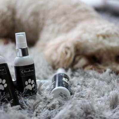 Fragranced Dog Colognes